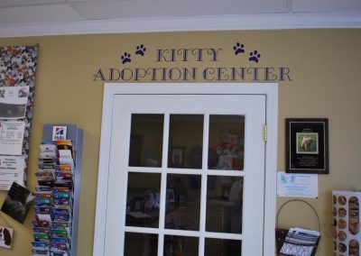 Kitty Adoption Center
